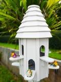 La casa bianca del nido dell'uccello con un uccello verde e due uccelli gialli Immagini Stock