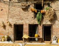 La casa con las mazorcas de maíz colgó para secarse en Nepal Foto de archivo libre de regalías