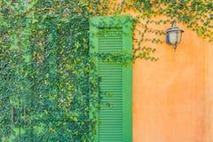 La casa d'annata del cottage decora con la pianta dell'edera immagini stock