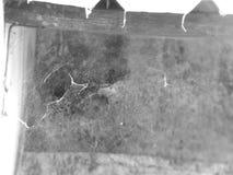 la casa de la araña Fotografía de archivo