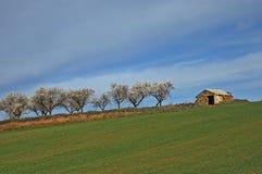 La casa de los almendra-árboles Foto de archivo libre de regalías