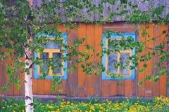 La casa de madera con los obturadores amarillos del abedul Foto de archivo libre de regalías