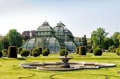 La casa de palma en el palacio de Schonbrunn, Viena imágenes de archivo libres de regalías