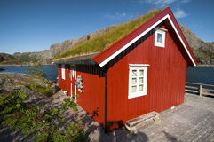 La casa del pescatore tipico nelle isole di Lofoten fotografia stock libera da diritti