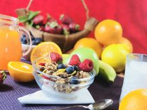 La casa deliziosa ha prodotto la prima colazione sana con i frutti ed i cereali immagine stock libera da diritti