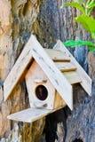 La casa di legno degli uccelli Fotografia Stock Libera da Diritti