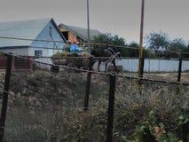 La casa di ritorno dei contadini dopo lavoro fotografie stock libere da diritti