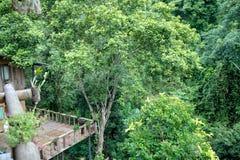 La casa in foresta Fotografia Stock