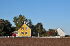 La casa gialla nei fagioli della soia e dell'azienda agricola sistema Immagine Stock