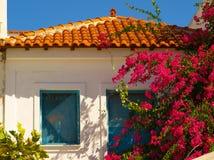 La casa greca tradizionale tipica con le finestre e la buganvillea blu fiorisce Fotografia Stock Libera da Diritti