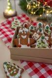 La casa ha prodotto i biscotti del pan di zenzero di Natale fotografia stock libera da diritti