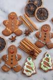 La casa ha prodotto i biscotti del pan di zenzero di Natale fotografia stock