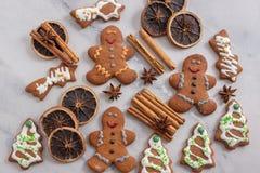 La casa ha prodotto i biscotti del pan di zenzero di Natale fotografie stock libere da diritti