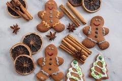 La casa ha prodotto i biscotti del pan di zenzero di Natale immagini stock
