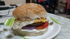 La casa ha prodotto l'hamburger del pollo Immagine Stock Libera da Diritti