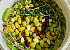 La casa ha prodotto le olive immagine stock