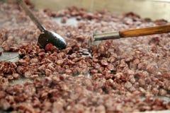 La casa ha prodotto le salsiccie Fotografie Stock Libere da Diritti