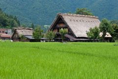 La casa japonesa de Gassho-zukuri, Shirakawa-va, Japón Fotografía de archivo libre de regalías