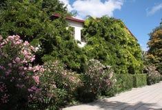 La casa nei verdi Immagine Stock