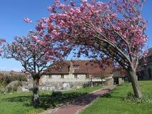 La casa parroquial vieja, Eastbourne, Sussex del este, Inglaterra, Reino Unido foto de archivo
