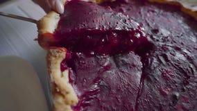 La casalinga prende il pezzo di torta americana classiccal dalla spatola alla cucina, pasticceria dolce, torta aperta della bacca stock footage