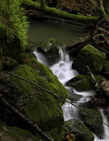 Cascada alejada rugosa del bosque Imagenes de archivo
