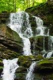 La cascada cárpata Shypit Fotografía de archivo libre de regalías