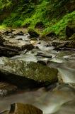 La cascada cárpata Shypit 2 Fotografía de archivo libre de regalías