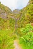 La cascada de 25 fuentes y el bosque verdoso ajardinan, Madeira Imagenes de archivo