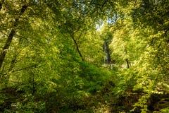 La cascada de m?n Urach, alba suabia, Baden-wurttemberg, Alemania, Europa imagen de archivo libre de regalías