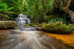 La cascada de Mun-Dang con la flor del antirrino foto de archivo libre de regalías