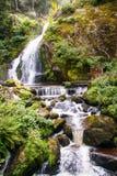 La cascada de Triberg en Alemania, bosque negro Fotos de archivo libres de regalías