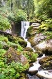 La cascada de Triberg en Alemania, bosque negro Fotos de archivo