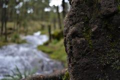 La cascada en Apatlaco6 Foto de archivo