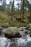 La cascada en Apatlaco2 Fotos de archivo