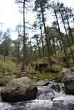 La cascada en Apatlaco3 fotos de archivo