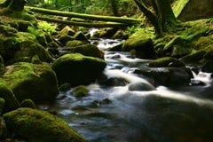 La cascada hermosa Imagen de archivo libre de regalías