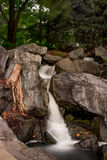 La cascada hermosa en el jardín botánico castaño fotos de archivo