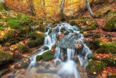 La cascada hermosa en el río de la montaña en bosque colorido del otoño con rojo y la naranja se va en la puesta del sol imagen de archivo libre de regalías