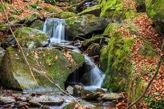 La cascada hermosa sale de una roca enorme en el bosque foto de archivo libre de regalías