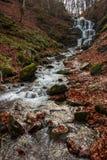 La cascada hermosa sale de una roca enorme en el bosque Imagen de archivo