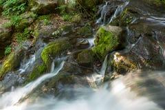 La cascada hermosa sale de una roca enorme en el bosque imagen de archivo libre de regalías