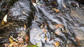 La cascada a lo largo de Collins Creek en Herber salta Arkansas Foto de archivo
