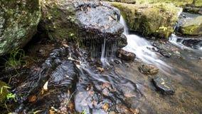 La cascada a lo largo de Collins Creek en Herber salta Arkansas Foto de archivo libre de regalías