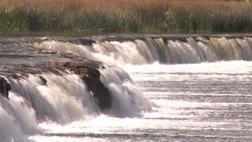 La cascada más ancha de Europa en Letonia Kuldiga almacen de video