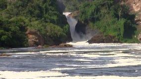 La cascada majestuosa las cataratas Murchison del río el Nilo en Uganda almacen de video