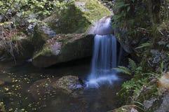 La cascada ocultada Fotos de archivo libres de regalías