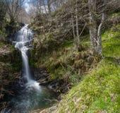 La cascada y los abedules en el Serra hacen Courel Fotografía de archivo libre de regalías