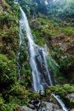 La cascade à écriture ligne par ligne dans la jungle Image stock