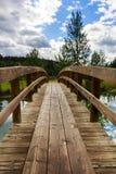La cascade accumule le pont Photos stock